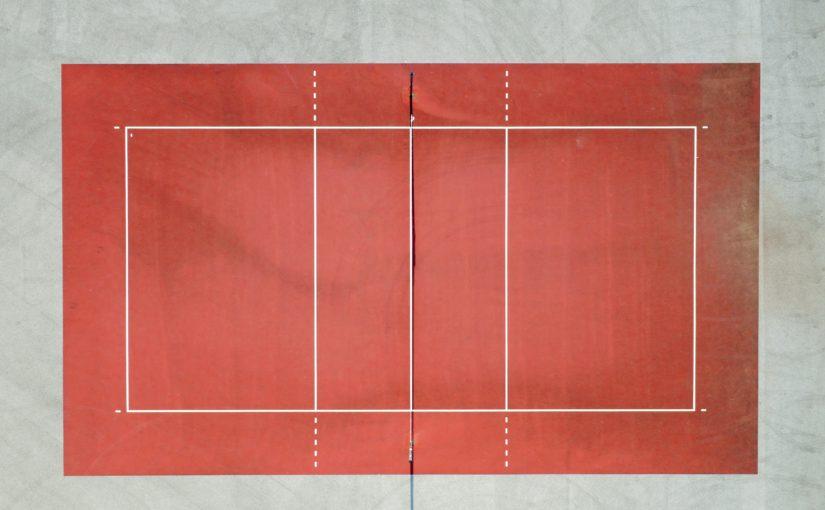 バレーボールの柳田将洋選手の驚異的なポーランド宣伝効果